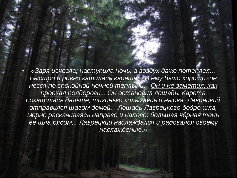 «Заря исчезла; наступила ночь, а воздух даже потеплел... Быстро и ровно катил...
