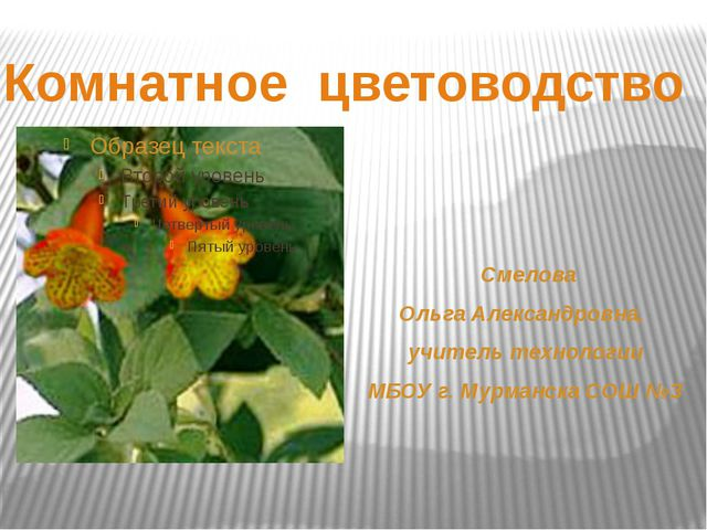 Смелова Ольга Александровна, учитель технологии МБОУ г. Мурманска СОШ №3 Ком...
