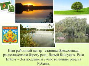 Наш районный центр- станица Брюховецкая расположена на берегу реки Левый Бейс