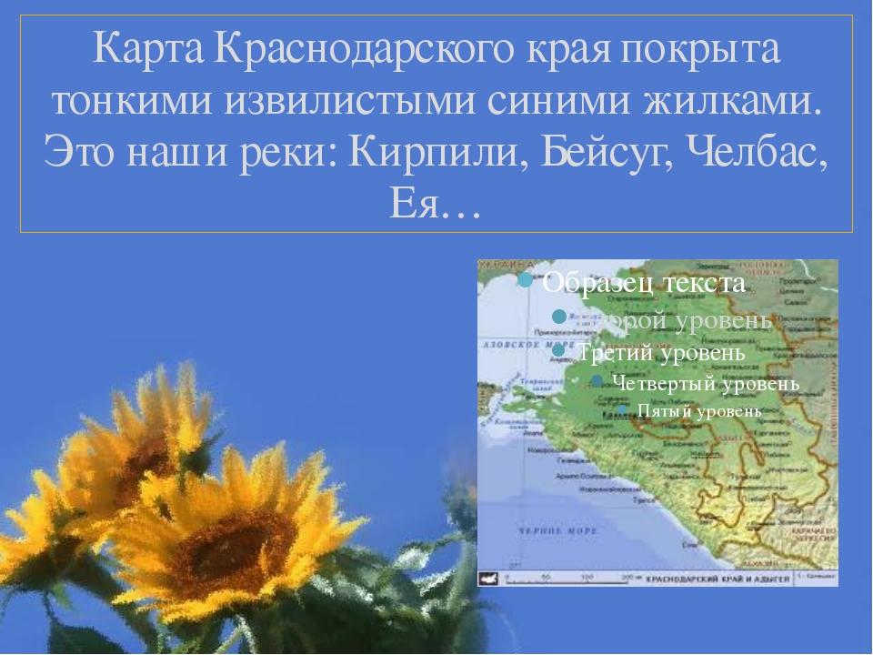 Карта Краснодарского края покрыта тонкими извилистыми синими жилками. Это наш...