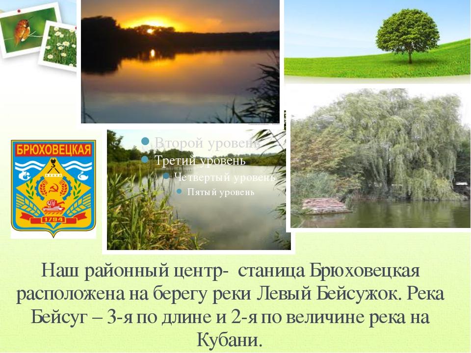 Наш районный центр- станица Брюховецкая расположена на берегу реки Левый Бейс...