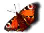 hello_html_m15d2de7f.png