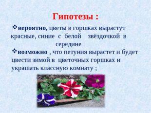 Гипотезы : вероятно,цветы в горшках вырастут красные, синие с белой  звёзд