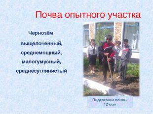 Почва опытного участка Чернозём выщелоченный, среднемощный, малогумусный, сре