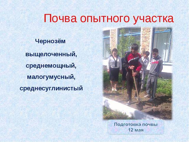 Почва опытного участка Чернозём выщелоченный, среднемощный, малогумусный, сре...