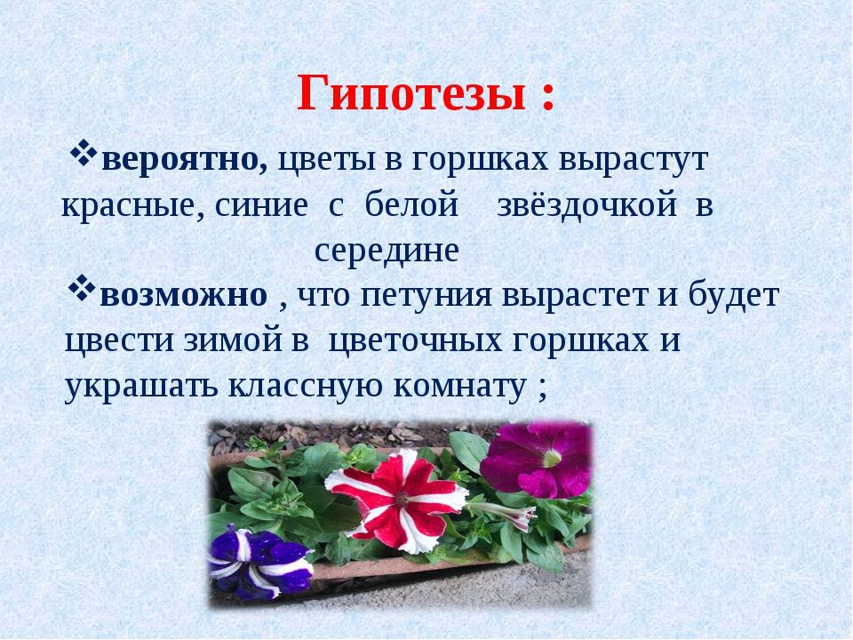 Гипотезы : вероятно,цветы в горшках вырастут красные, синие с белой  звёзд...