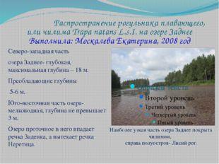 Распространение рогульника плавающего, или чилима Trapa natans L.s.I. на озер