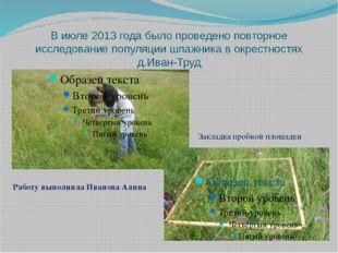 В июле 2013 года было проведено повторное исследование популяции шпажника в о