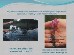 Изучение биологических особенностей и распространения растений , занесенных в