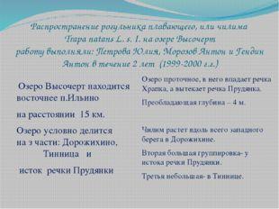 Распространение рогульника плавающего, или чилима Trapa natans L. s. I. на оз