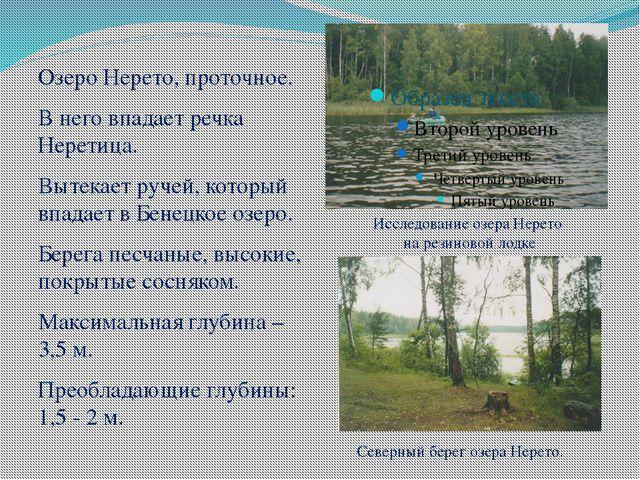 Озеро Нерето, проточное. В него впадает речка Неретица. Вытекает ручей, котор...