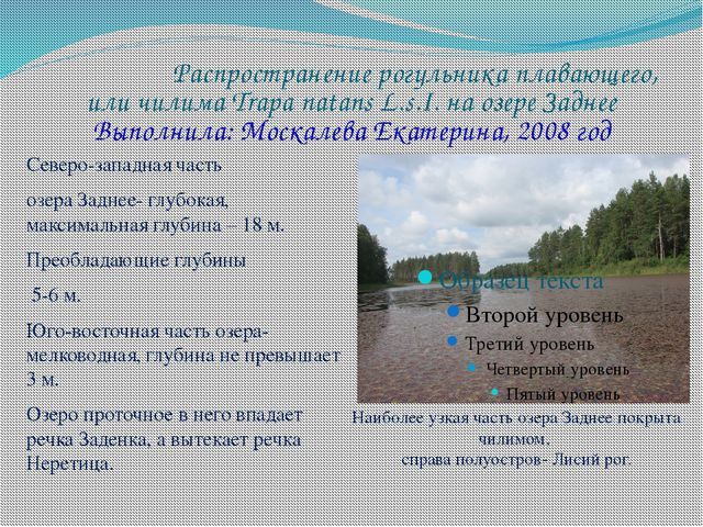 Распространение рогульника плавающего, или чилима Trapa natans L.s.I. на озер...