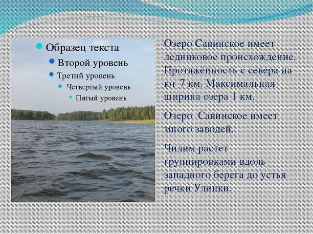 Озеро Савинское имеет ледниковое происхождение. Протяжённость с севера на юг...