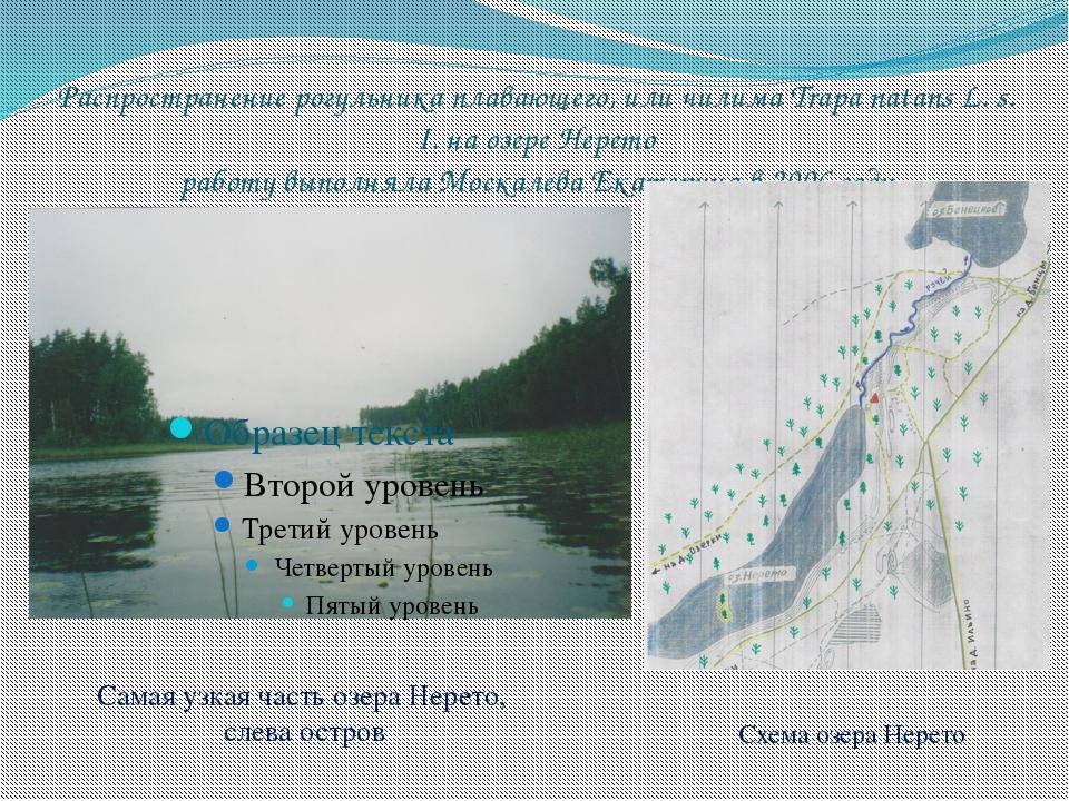 Распространение рогульника плавающего, или чилима Trapa natans L. s. I. на оз...