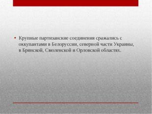 Крупные партизанские соединения сражались с оккупантами в Белоруссии, северн