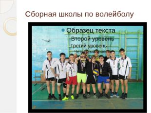 Сборная школы по волейболу