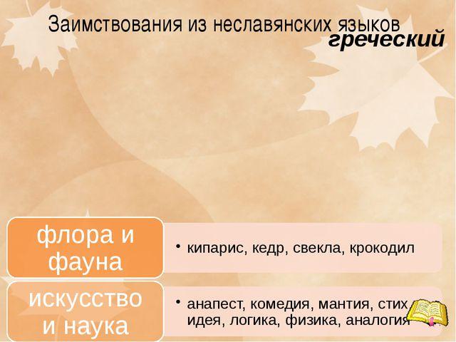 Заимствования из неславянских языков греческий