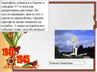Картофель появился в Европе в середине 17-го века как декоративное растение.