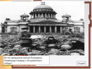 Во что превратили жители блокадного Ленинграда площадь у Исаакиевского собора