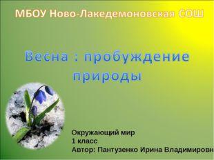 Окружающий мир 1 класс Автор: Пантузенко Ирина Владимировна