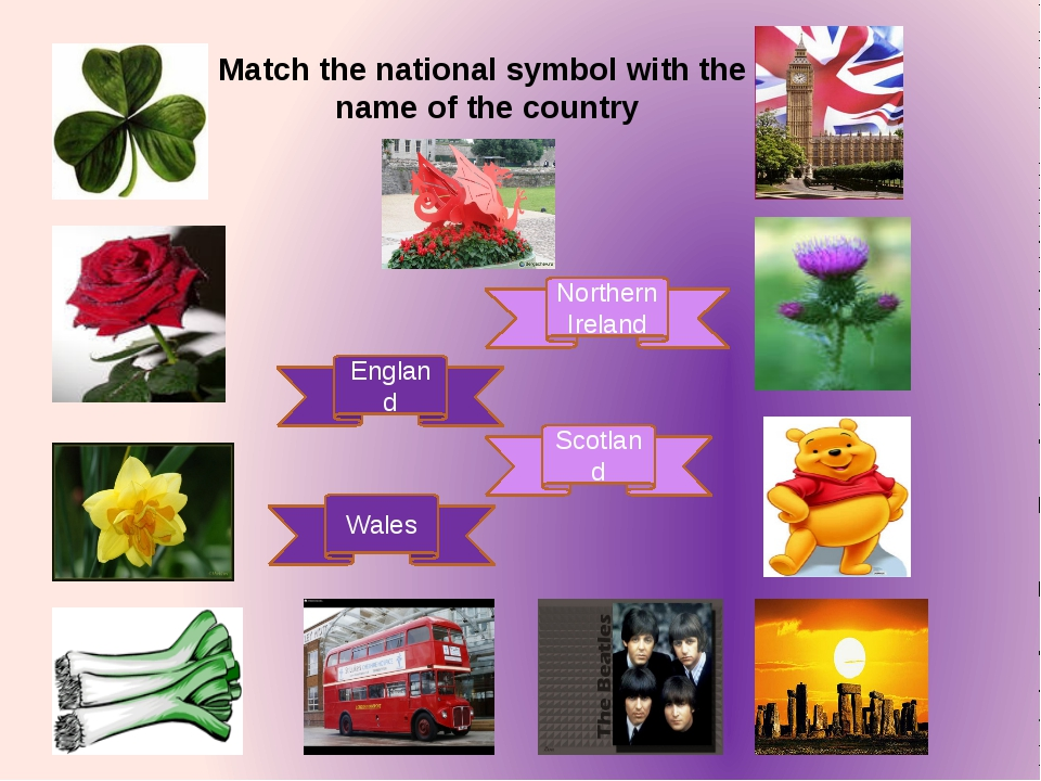 England Scotland Wales Northern Ireland Match the national symbol with the na...