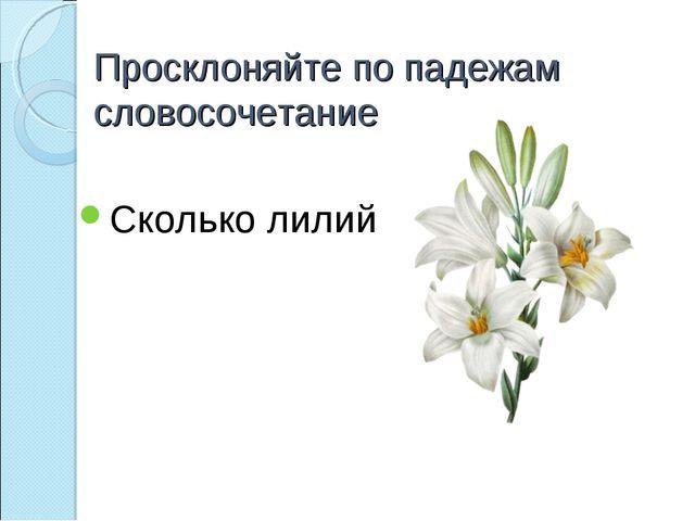 Просклоняйте по падежам словосочетание Сколько лилий