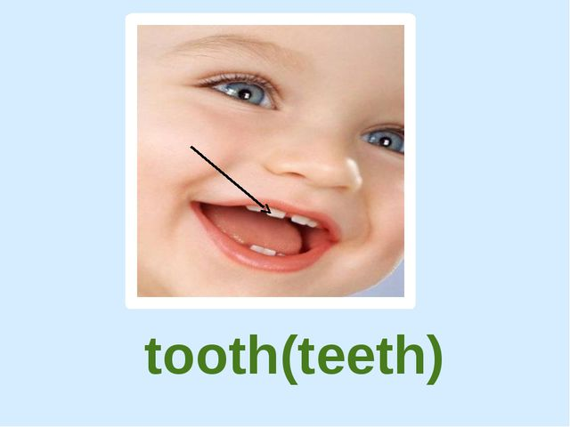 tooth(teeth)
