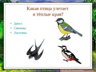 Какая птица улетает в тёплые края? Дятел Синичка Ласточка Лазарева Лидия Андр
