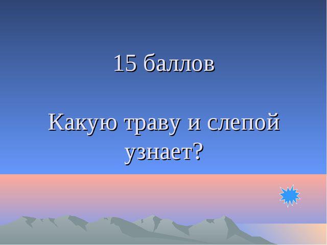 15 баллов Какую траву и слепой узнает?