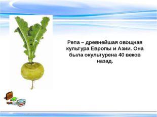 Репа – древнейшая овощная культура Европы и Азии. Она была окультурена 40 ве