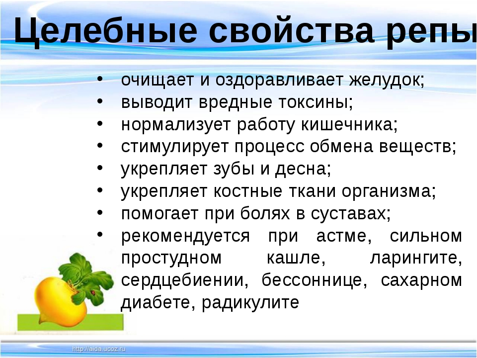 Целебные свойства репы очищает и оздоравливает желудок; выводит вредные токс...