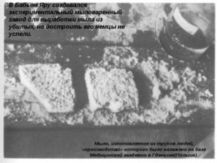 В Бабьем Яру создавался экспериментальный мыловаренный завод для выработки мы