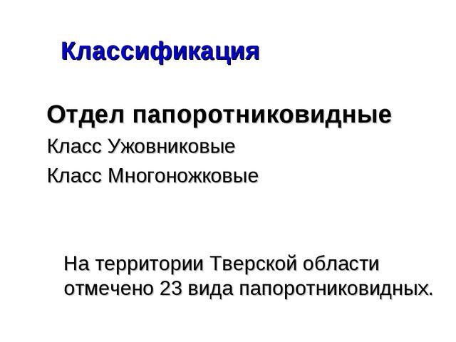 Классификация Отдел папоротниковидные Класс Ужовниковые Класс Многоножковые...