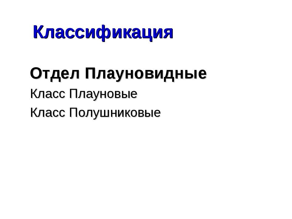 Классификация Отдел Плауновидные Класс Плауновые Класс Полушниковые