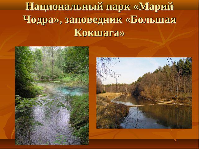 Национальный парк «Марий Чодра», заповедник «Большая Кокшага»