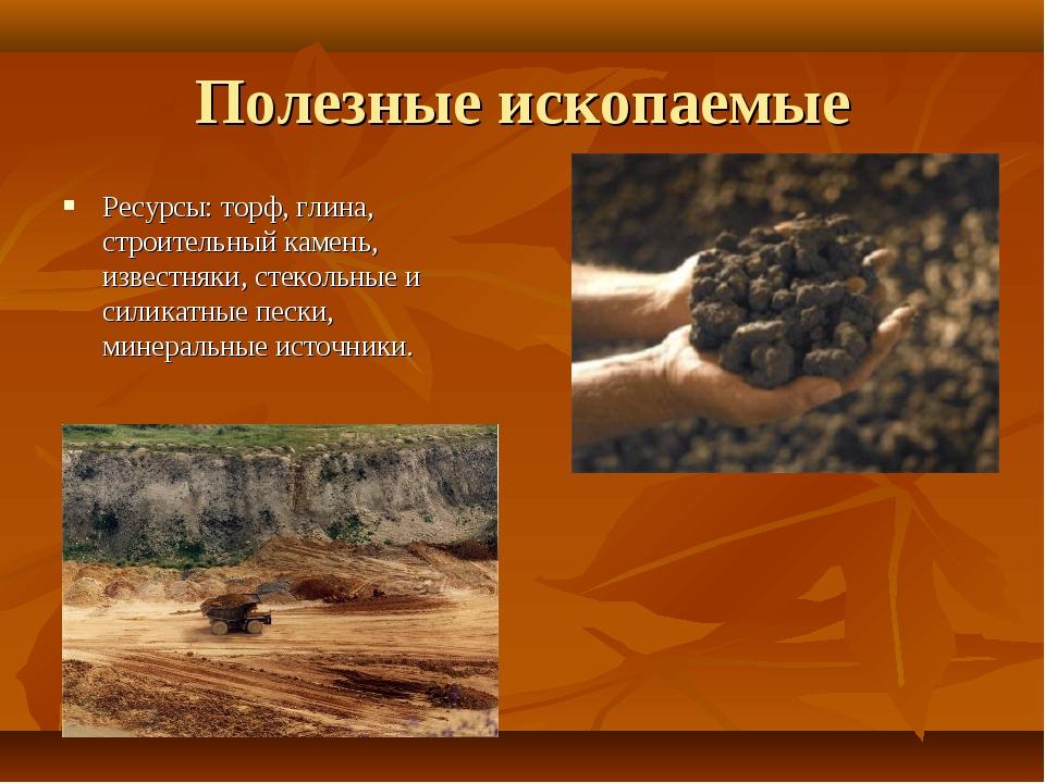 Полезные ископаемые Ресурсы: торф, глина, строительный камень, известняки, ст...