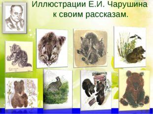 Иллюстрации Е.И. Чарушина к своим рассказам.