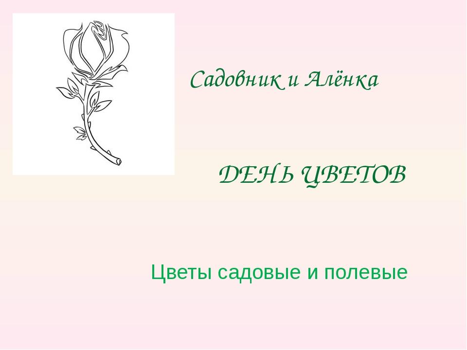 ДЕНЬ ЦВЕТОВ Цветы садовые и полевые Садовник и Алёнка