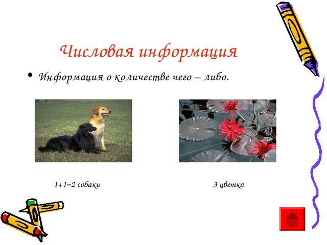 Числовая информация Информация о количестве чего – либо. 1+1=2 собаки 3 цветка
