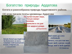 Богатство природы Ардатова Богата и разнообразна природа Ардатовского района.