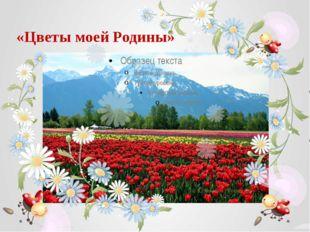 «Цветы моей Родины»