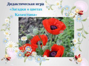 Дидактическая игра «Загадки о цветах Казахстана»