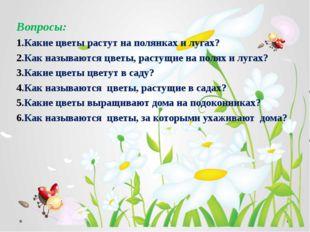Вопросы: Какие цветы растут на полянках и лугах? Как называются цветы, растущ