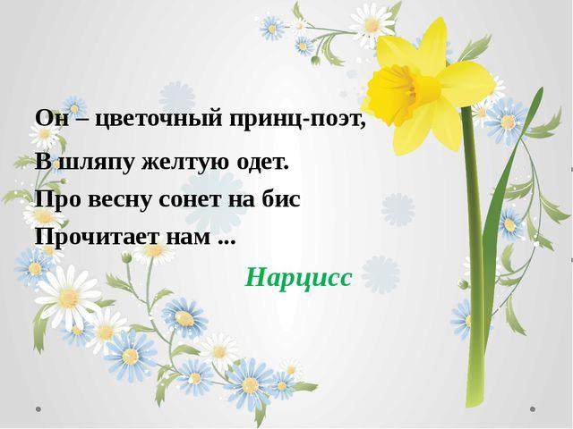 Он – цветочный принц-поэт, В шляпу желтую одет. Про весну сонет на бис Прочит...