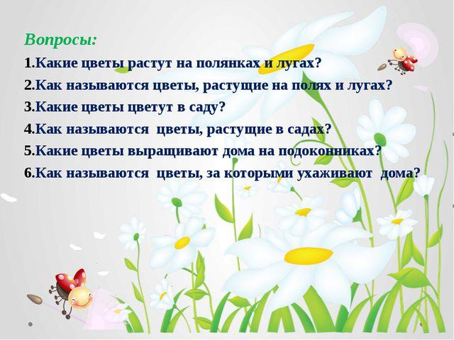 Вопросы: Какие цветы растут на полянках и лугах? Как называются цветы, растущ...