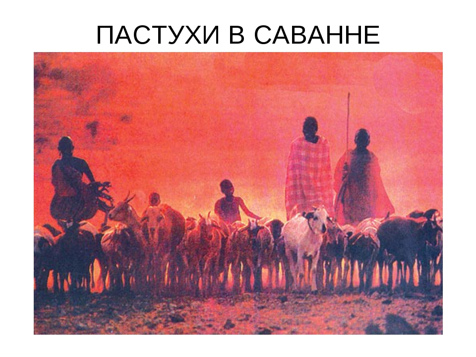 ПАСТУХИ В САВАННЕ