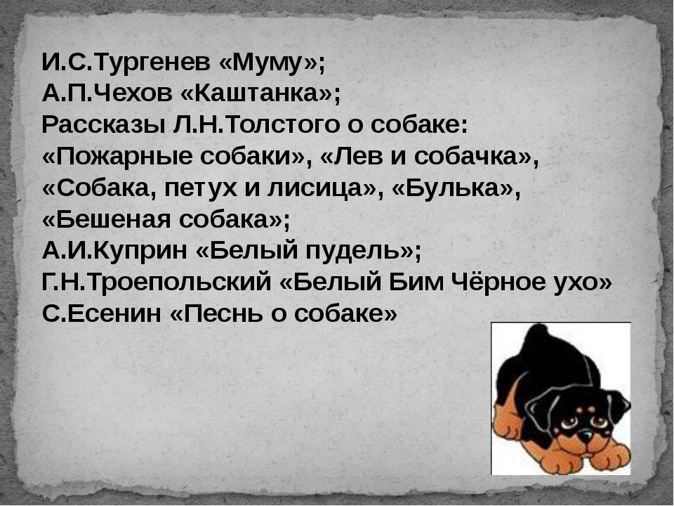 И.С.Тургенев «Муму»; А.П.Чехов «Каштанка»; Рассказы Л.Н.Толстого о собаке: «П...