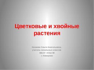 Цветковые и хвойные растения Кихаева Ольга Анатольевна, учитель начальных кла
