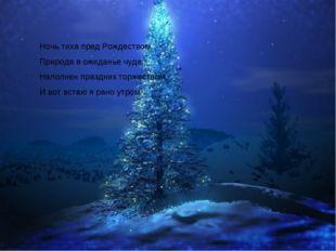 Ночь тиха пред Рождеством, Природа в ожиданье чуда. Наполнен праздник торжест