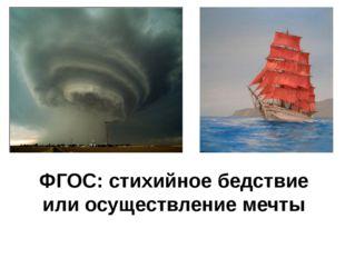ФГОС: стихийное бедствие или осуществление мечты